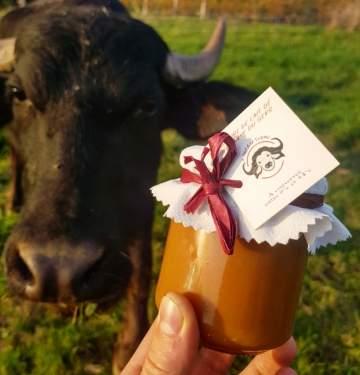 Vente de fromages à la ferme près de Lectoure